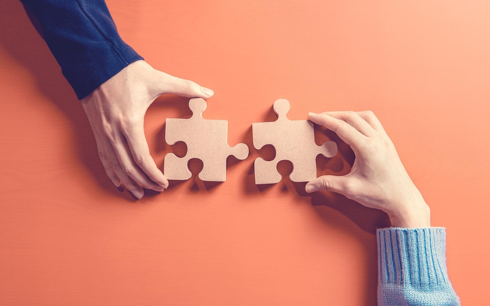 Dual Partnership